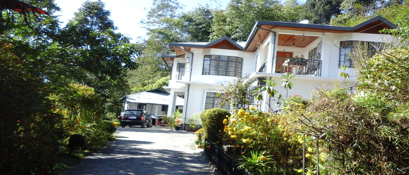 Grey Dove HomeStay